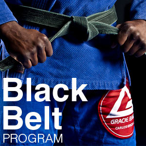 Black-Belt-Program